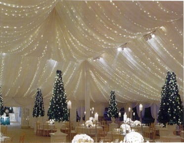 winter wedding tent